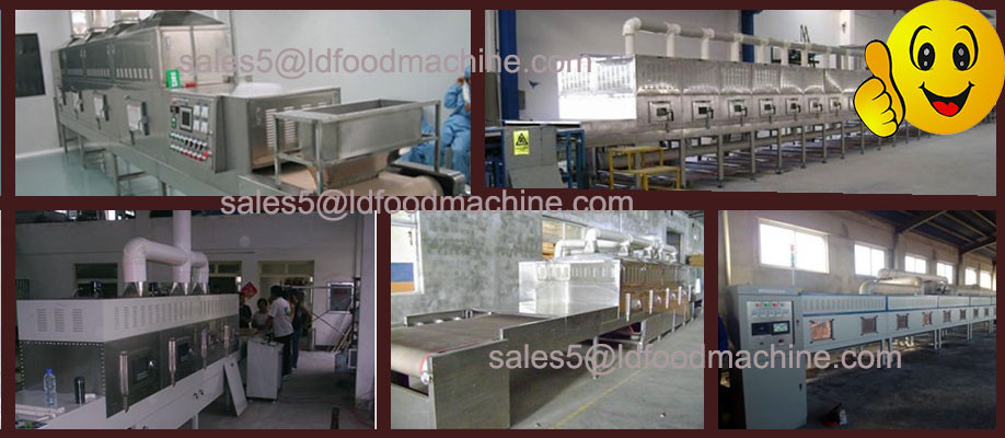 Stainless steel fruit food vegetable vacuum freezer dryer/lyophilizer