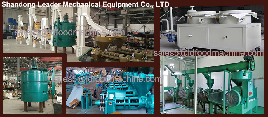 1-100TPD moringa edible oil processing line with resonable price
