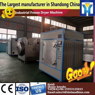 80m2 low noise Vacuum Freeze Dryer 800kg per batch for vegetable