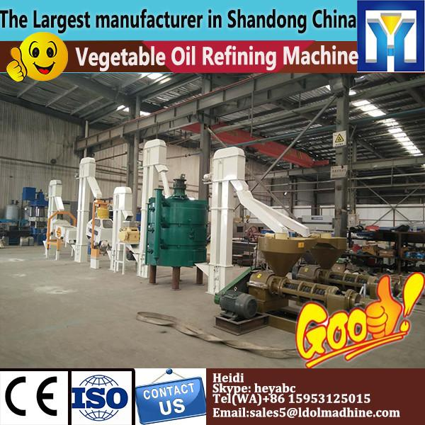 small scale sunflower oil production plant,Sunflower seed expeller #1 image
